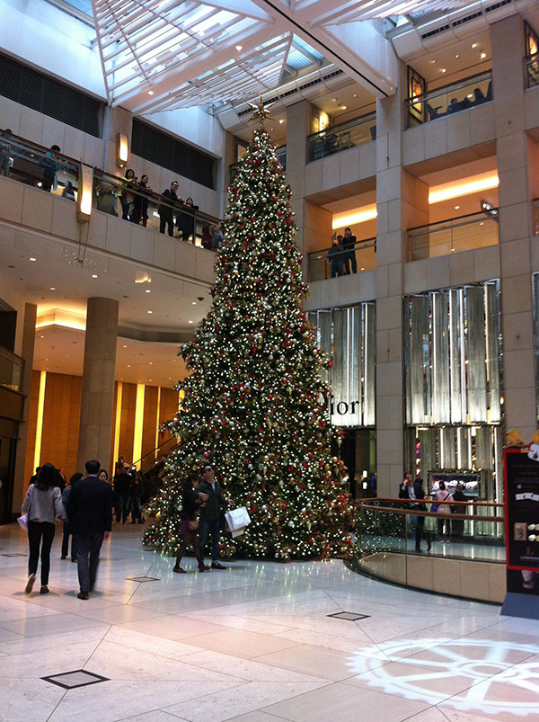 Amazing Hong Kongs Top 5 Christmas Trees Download Free Architecture Designs Terchretrmadebymaigaardcom