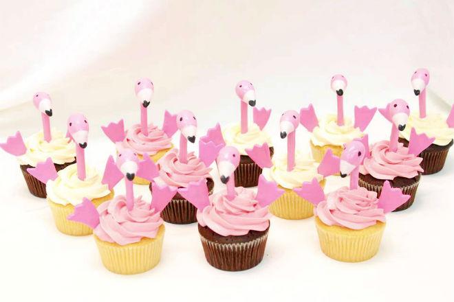 Flamingo Complete Deelite Cupcakes