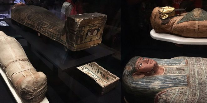 Eternal Life Six Ancient Egyptian Mummies On Display In Hong Kong
