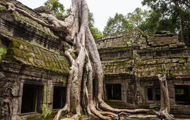 ta phrom siem reap - best solo travel destinations
