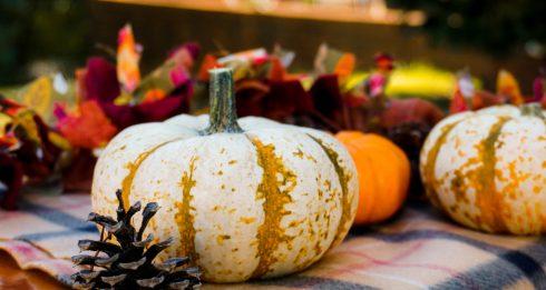 autumn pumpkin weekend ahead