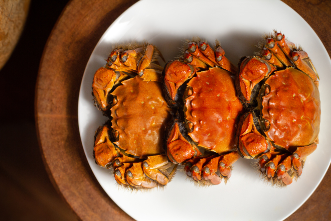 Duddell's hairy crabs